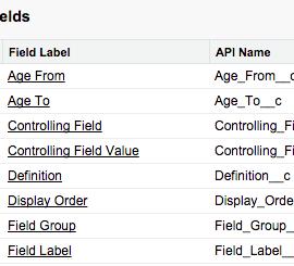 Custom Metadata Types for easier deployments